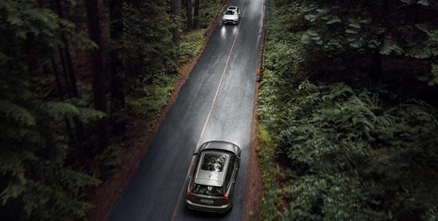 To biler møtes på vei i skogen