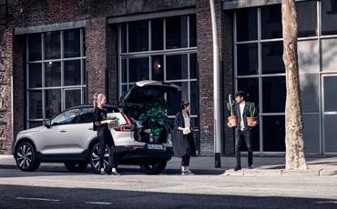 Tre mennesker flytter planter i bil